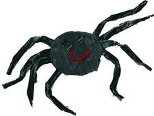 My Little Spider Finger Rhyme