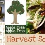 Harvest Songs For Kids