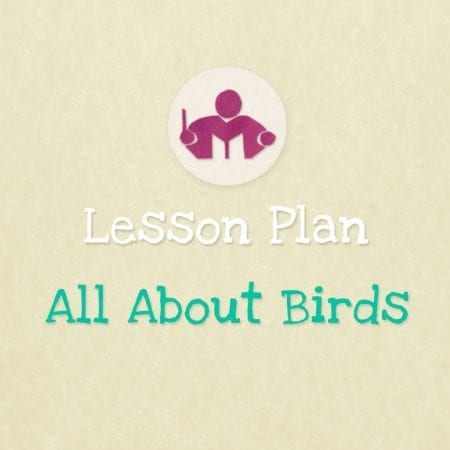 All About Birds lesson plan