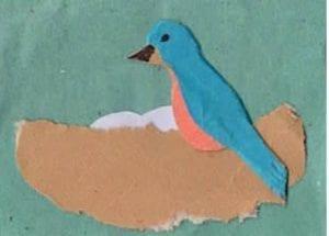 Bluebird nest finger play